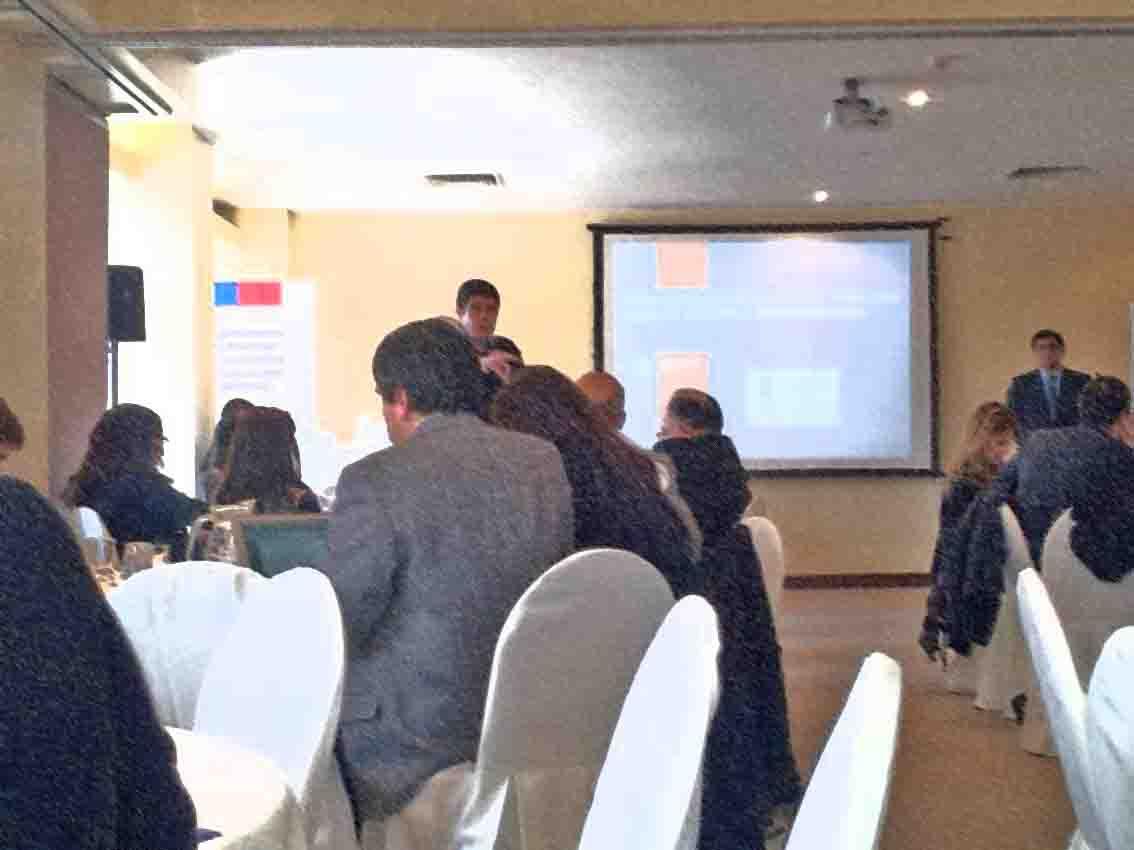 Encuentro OPS-Minsal: La visión del tercer sector.